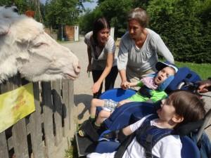 Tiergestützer Unterricht 4