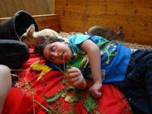 Tiergestützer Unterricht 5